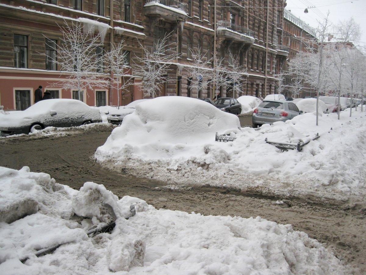 снег в питере сегодня фото поздравительные открытки наша