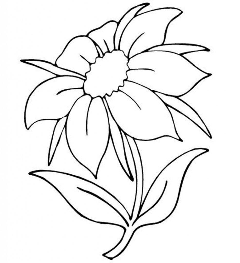 Картинки про, рисунок большие цветы
