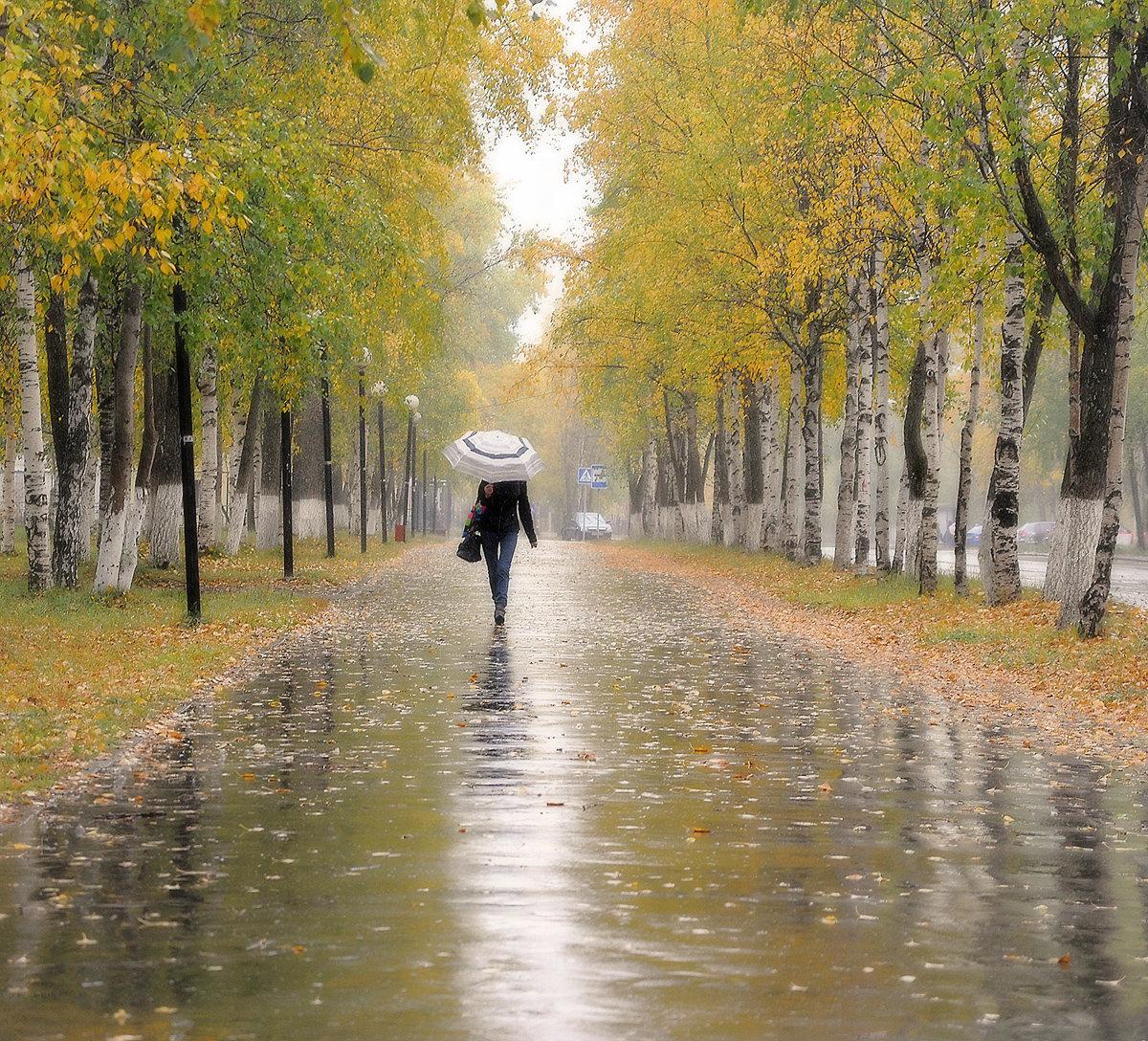 Холодная осень картинки кафе