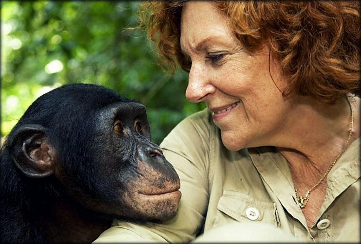 Человек с обезьянкой картинки приводит тому