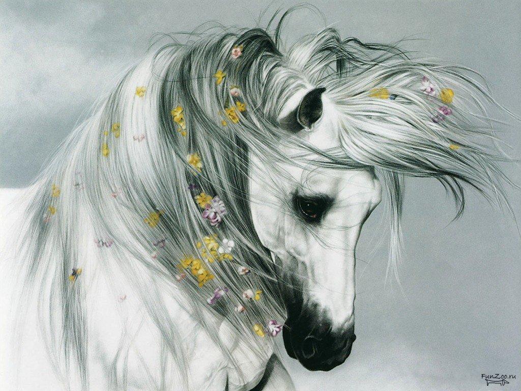 Картинки красивые животные нарисованные