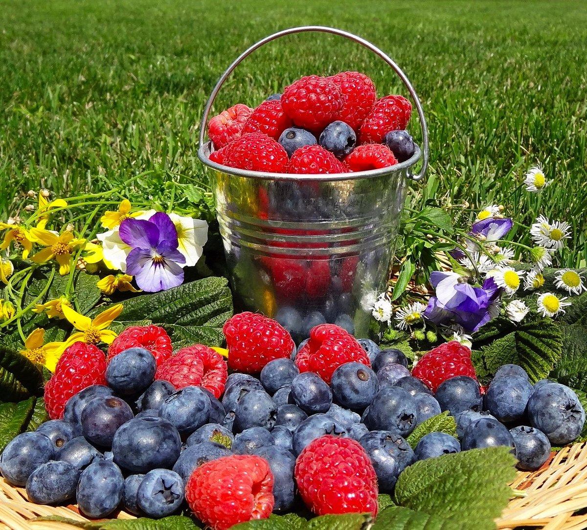 Открытки с цветами и ягодами, днем