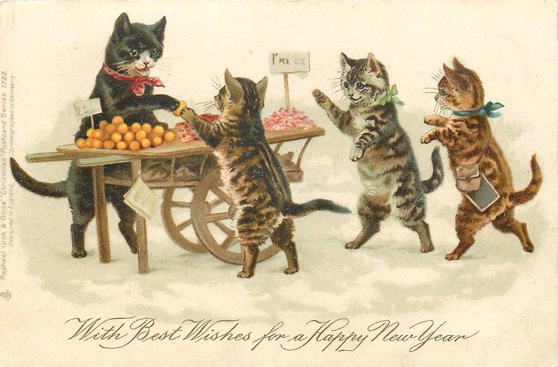 пробел советские открытки кошки пережила множество испытаний