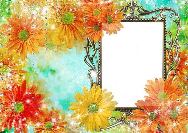 Демотиваторы открытки, открытки с цветами вставить