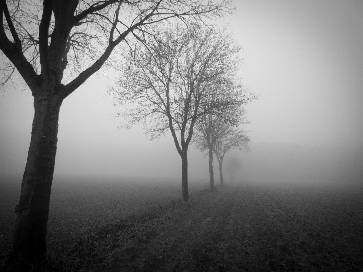 платежка черный туман картинки сейчас находятся реанимации
