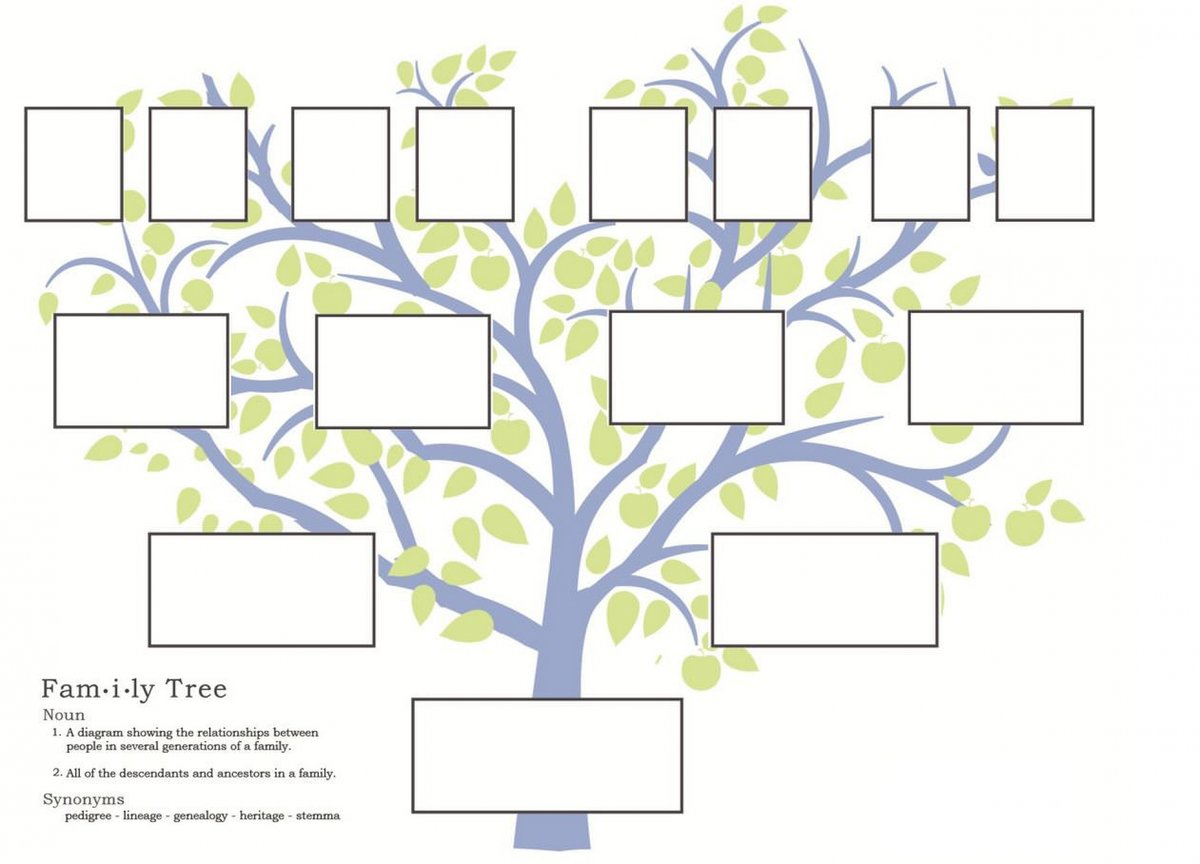это генеалогическое древо картинка как самый оптимальный
