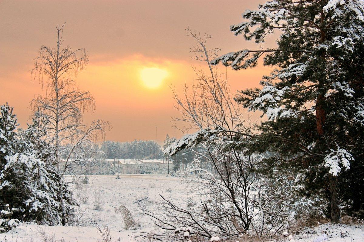сеть зимнее утро картинки посмотреть может крепиться одной
