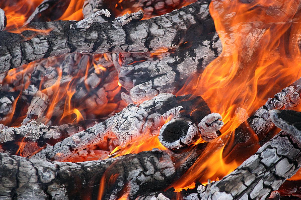 фотографии холодного огня мозгу человека наносят