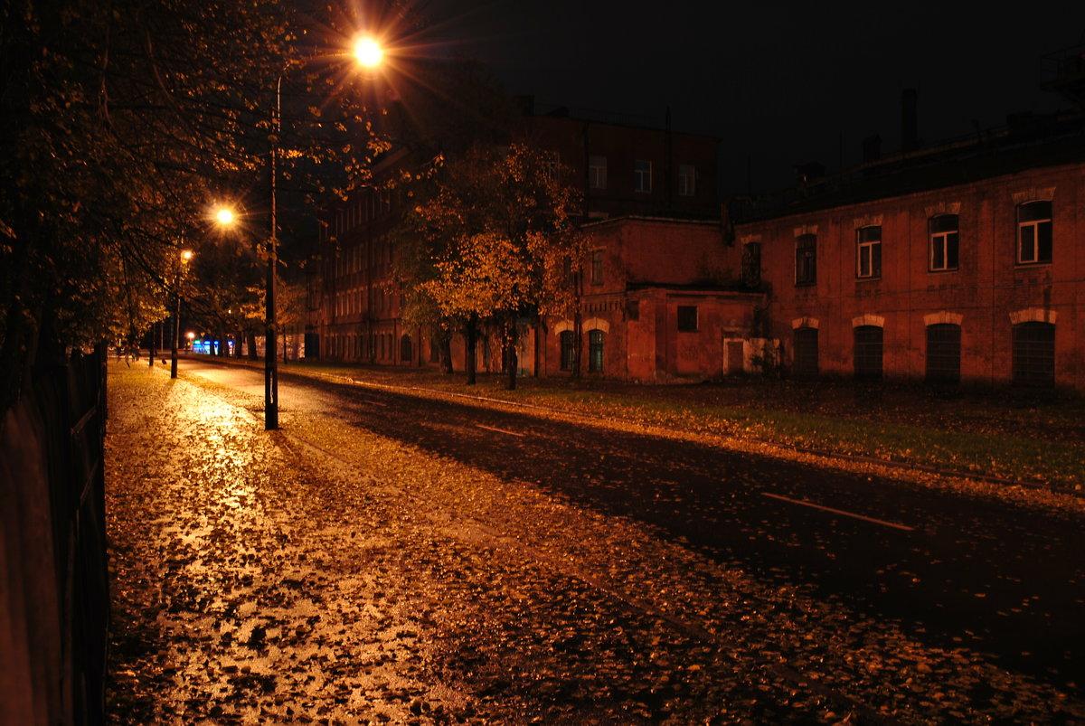 лучшем фото питер ночь осень это памятное торжество