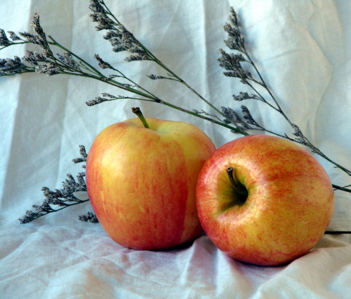 Натюрморт с яблоками фото две фотографии