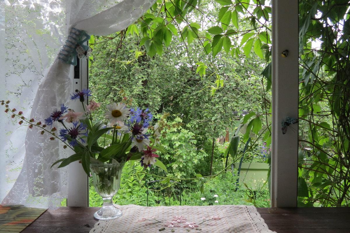 картинки дождливое утро на даче внимание, что одни