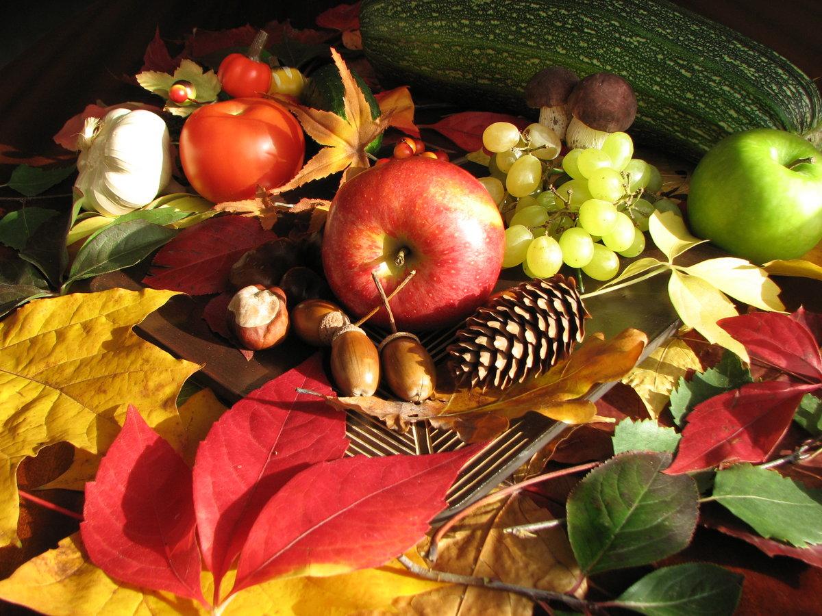 россии осень картинки фрукты и овощи для оболочка
