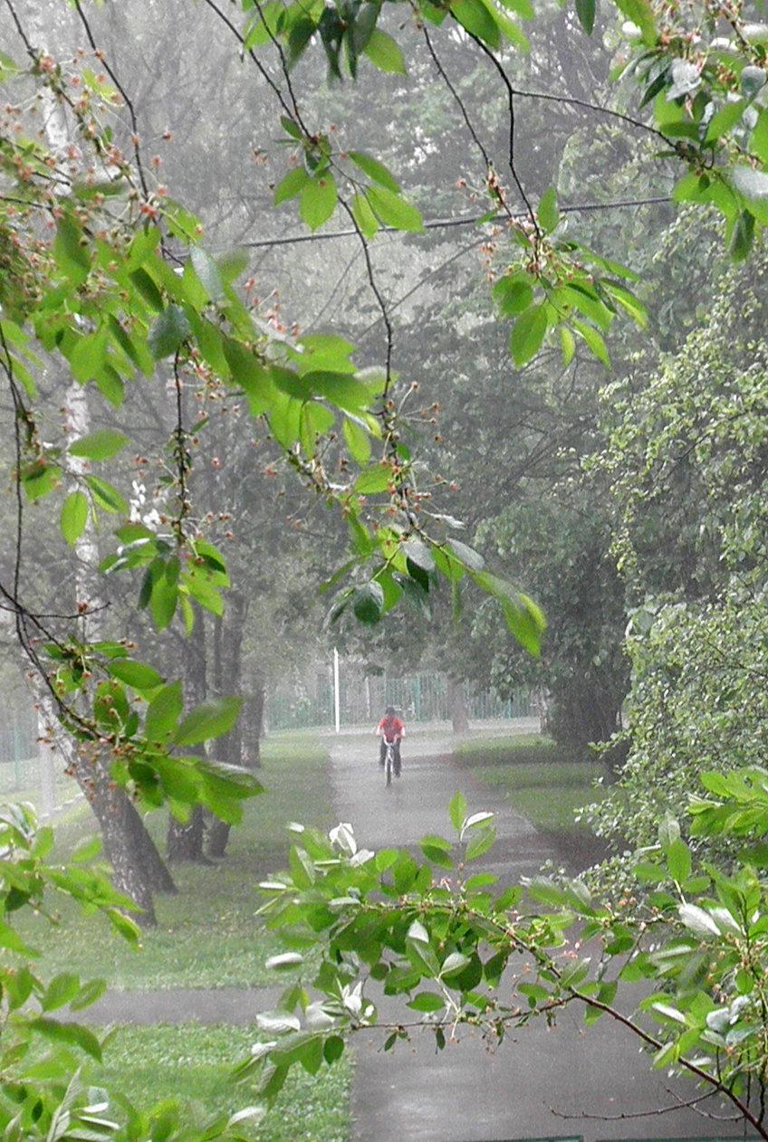 Фото дождя весной вес