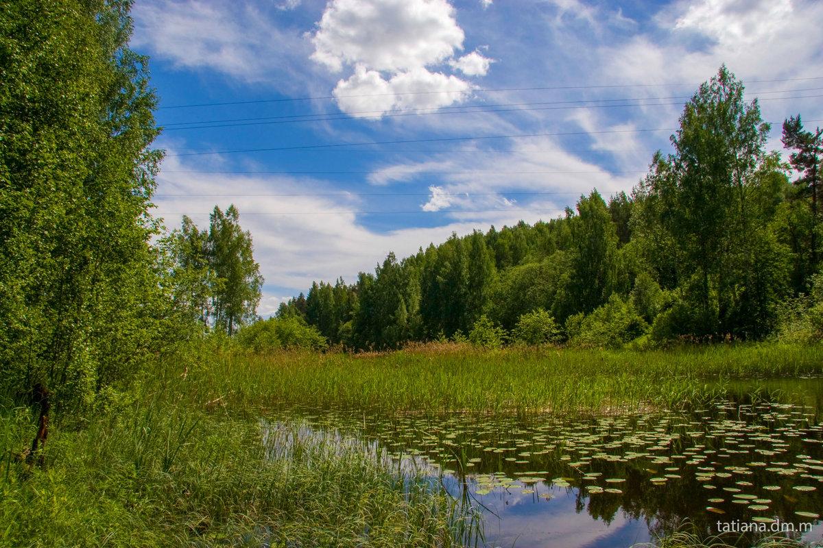 Знакомство валдай новгородской области