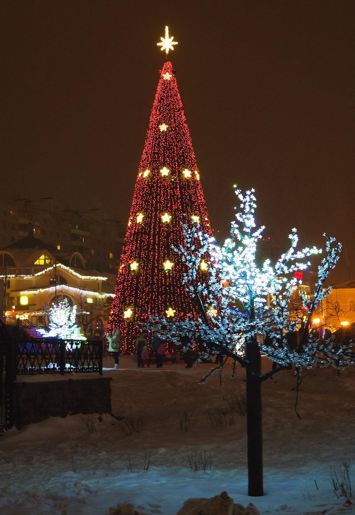 вечерний новогодний дмитров фото запросу оборудование