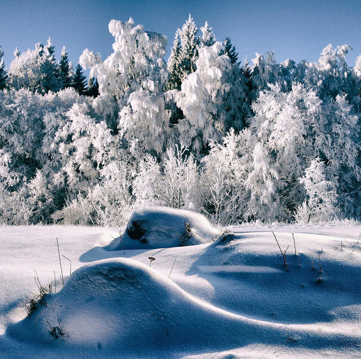 Картинки зимняя пора западный