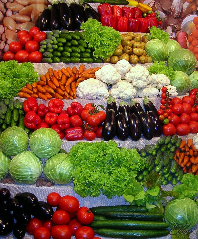 Картинки богатый урожай овощей