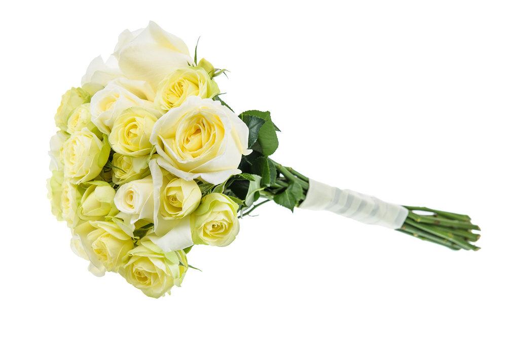 новые лоты картинки букет белых роз на белом фоне хуррем великалепныйвек великолепные