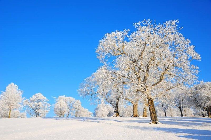 Класс, зима фото и открытки