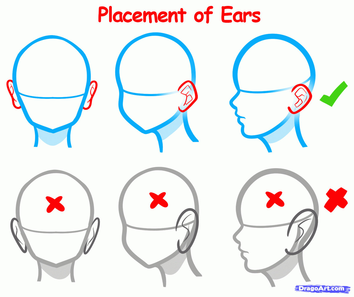 Images Of Easy To Draw The Structure Of Human Ear How To Dra Card