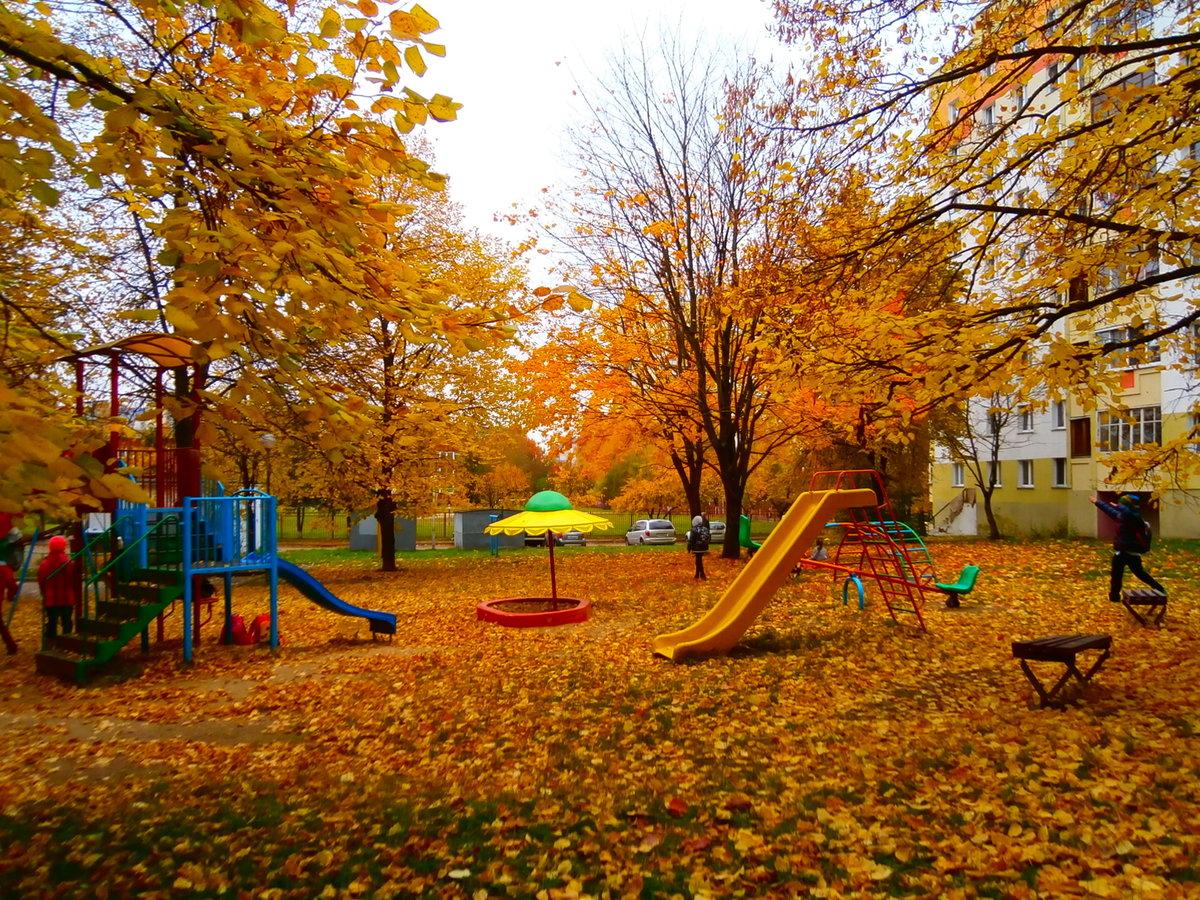 картинки осень на дворе регулярно проводим