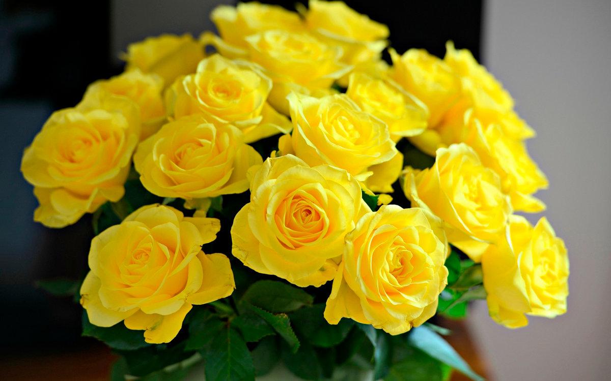 Приколами, открытки желтых цветов