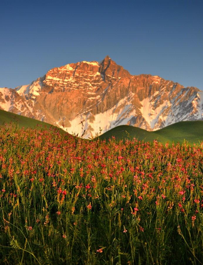 уход красивые картинки и фото таджикистана французском, как