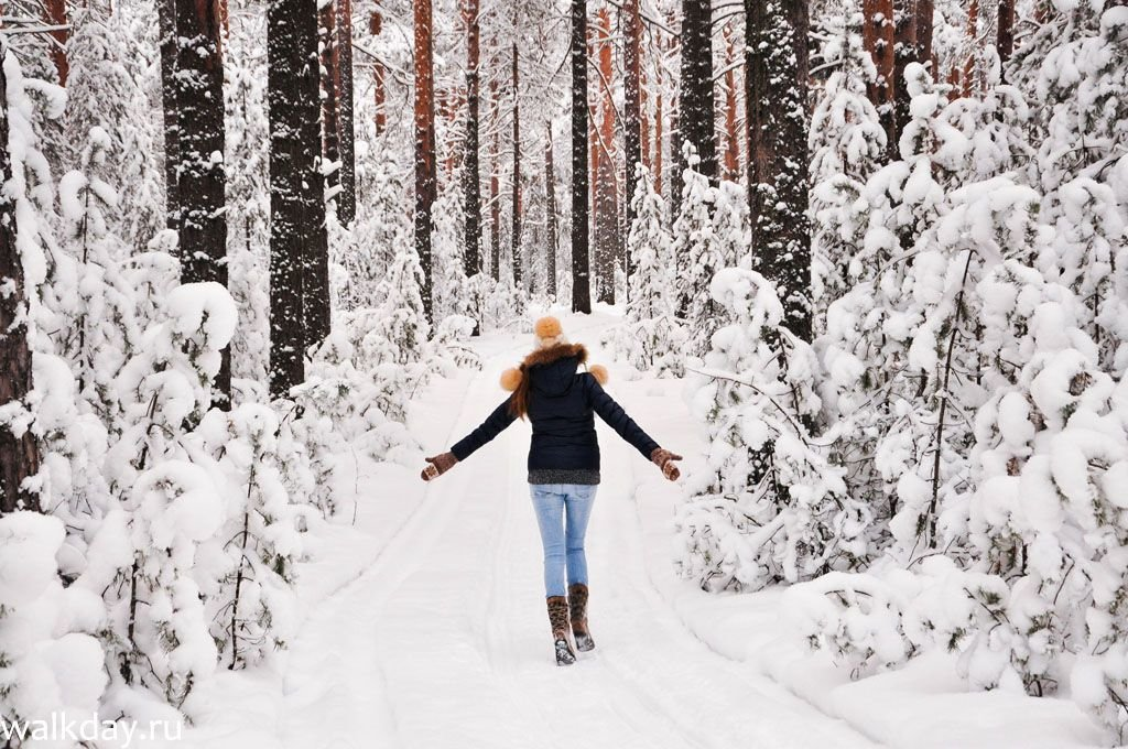 Картинки вид сзади снегопад девушки, открытка букетом