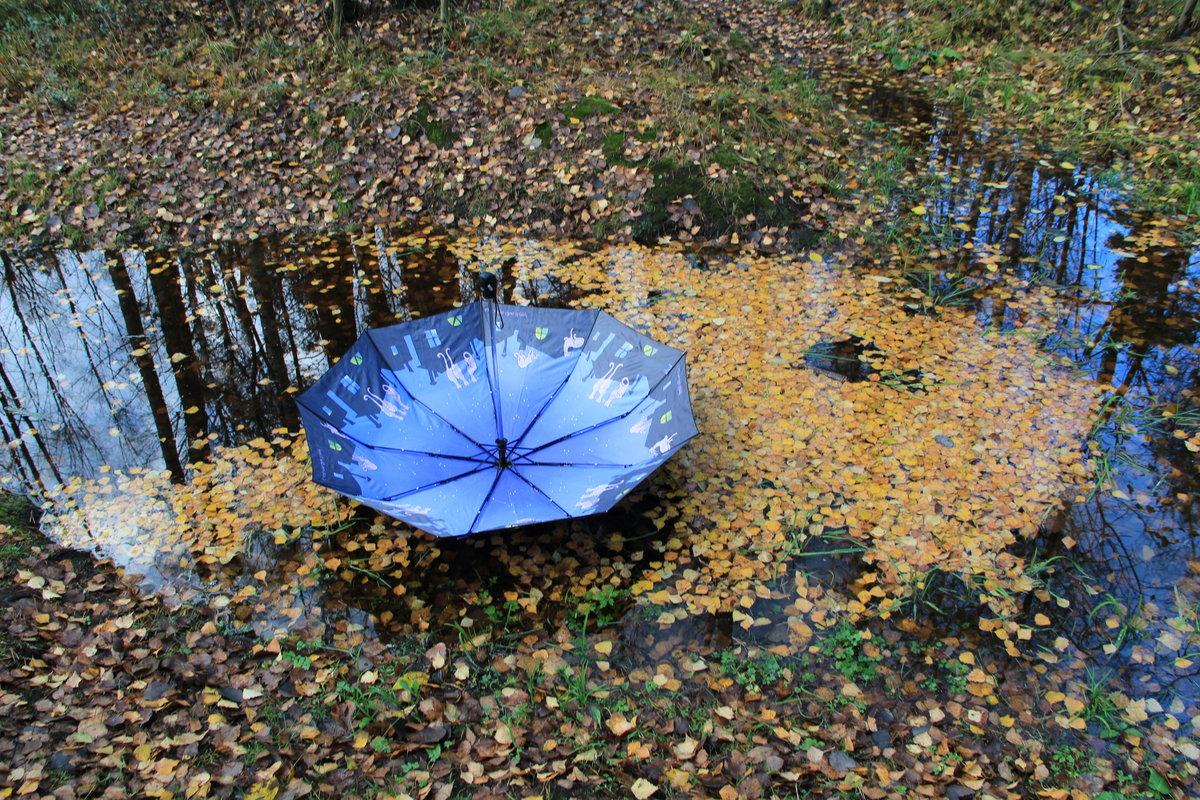Картинки осень зонтик листья