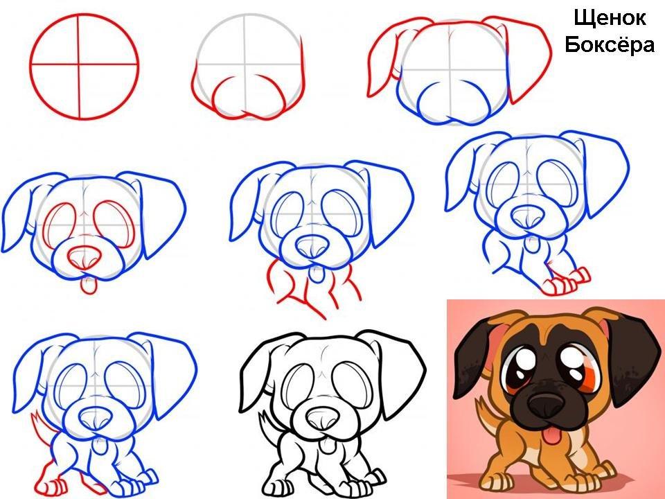 рисунки собак карандашом для начинающих картинки