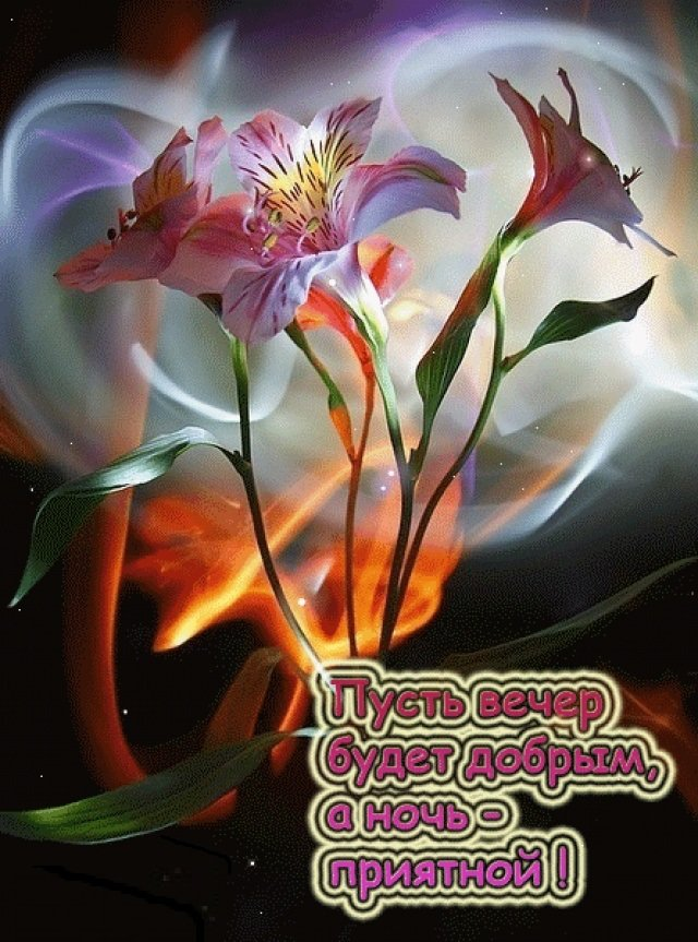 Картинки с надписью растения