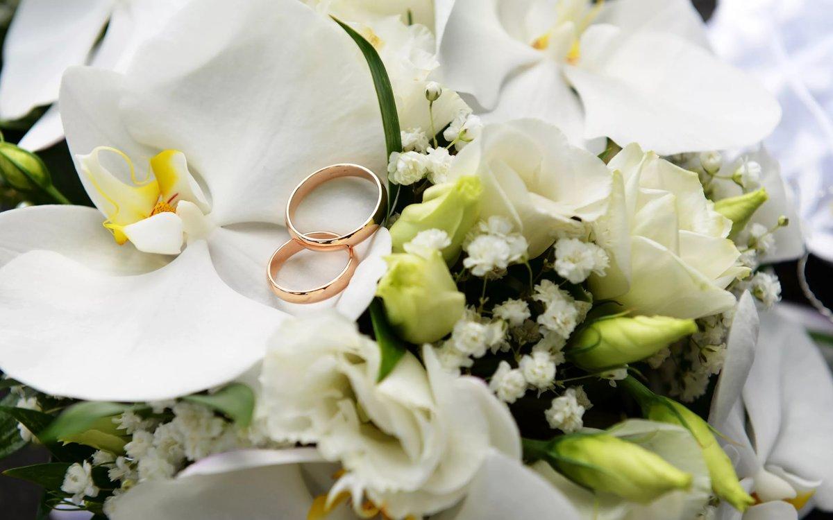 Яндекс картинки свадьба, днем