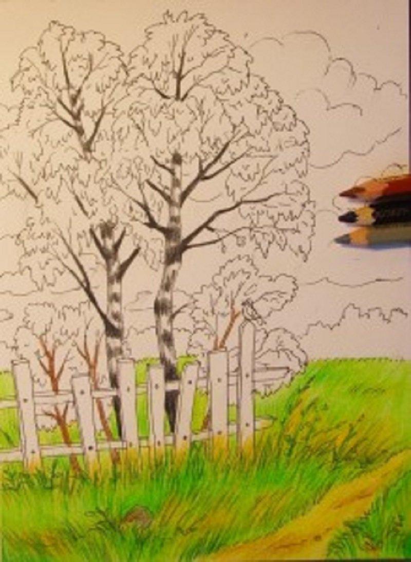 Пейзаж осенний картинки карандашом