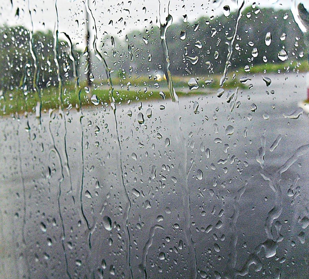 Картинка дождь на стекле, тюльпаны открытке открытки
