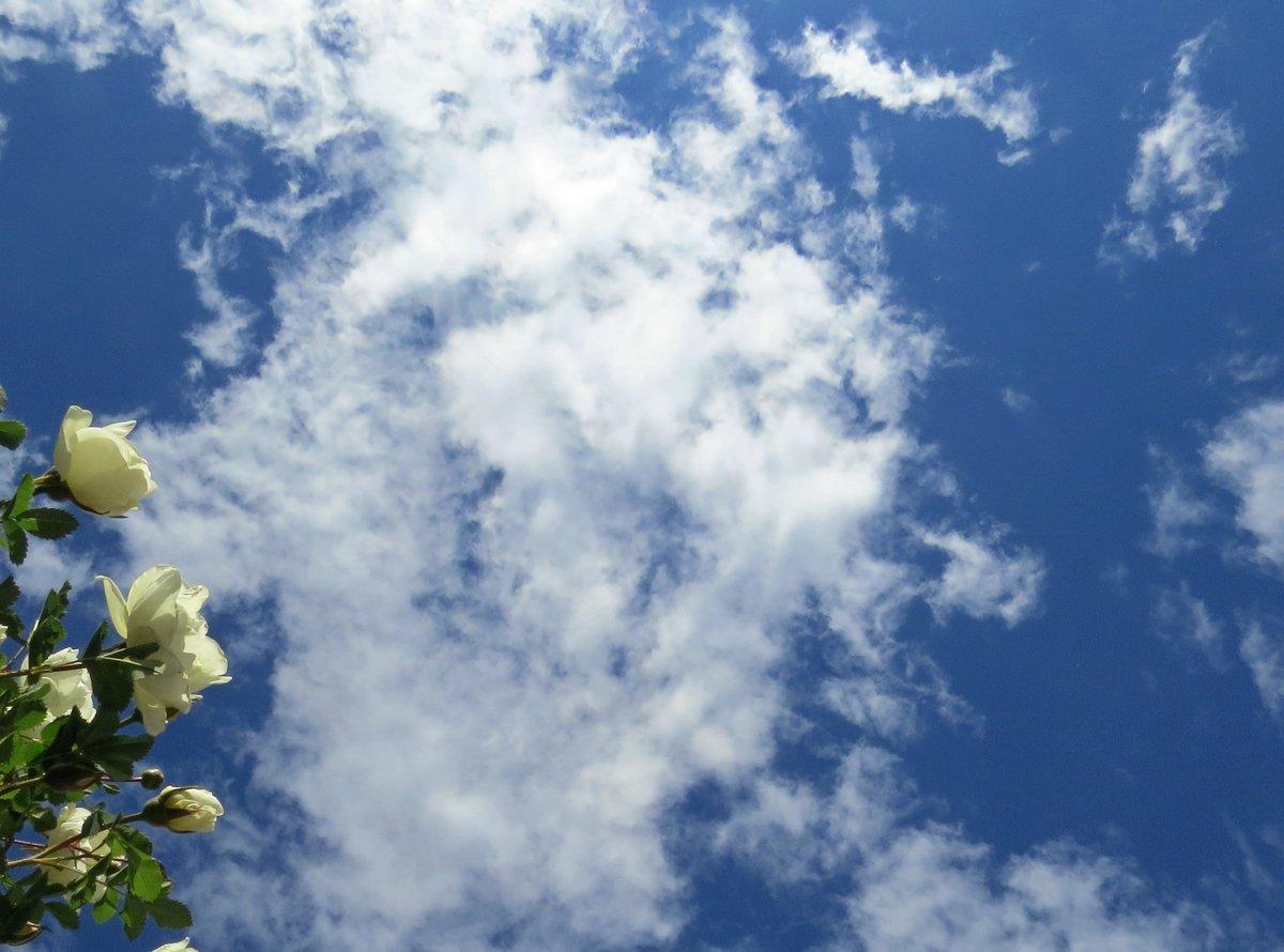 над нами небо голубое картинки