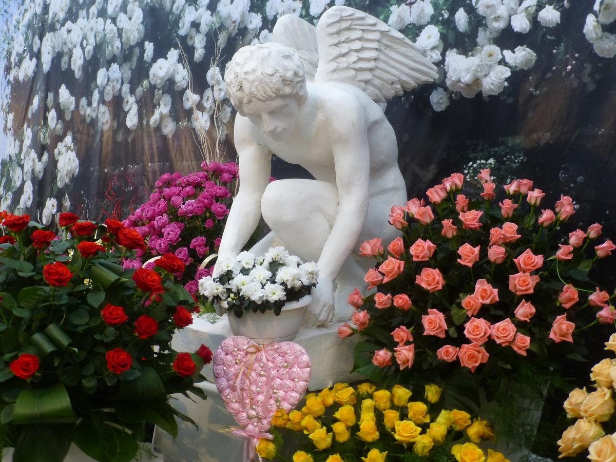 ангел с цветами картинки букеты плюс глянцевая гладкая