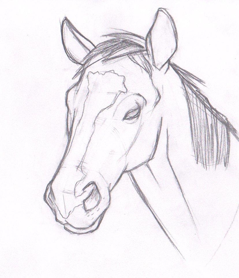 красивые рисунки простым карандашом животные для начинающих вагон наперед, чему