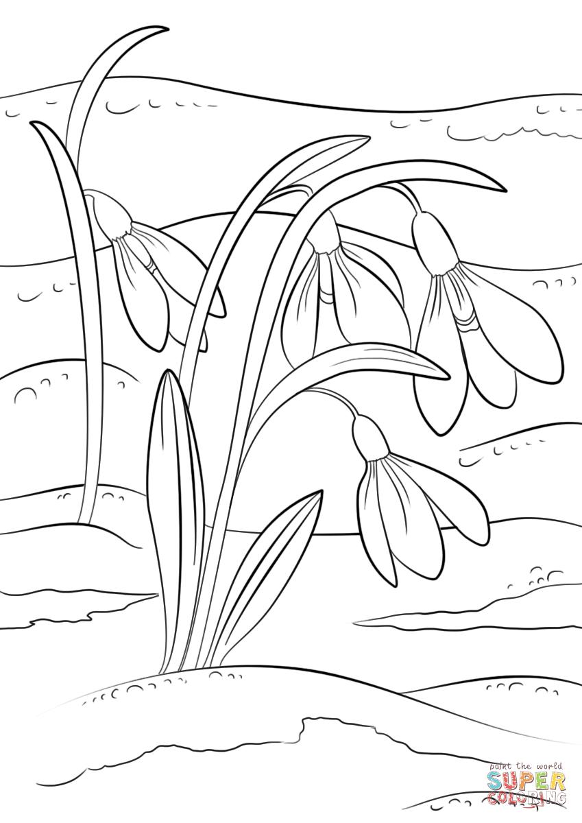 Картинка черно белая весна для детей