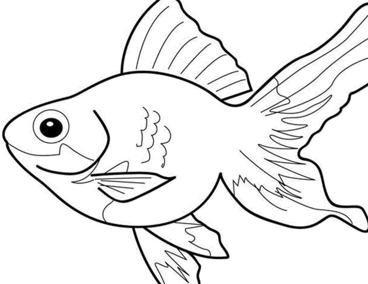 Рыбы картинки раскраски
