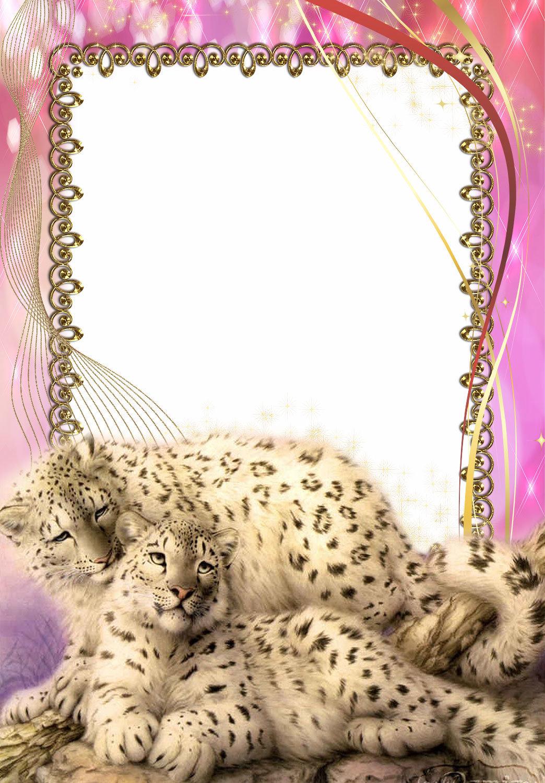 Картинки рамки с животными, открытки оленями