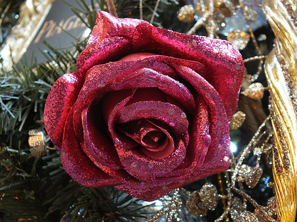 морепродукты розы с блеском картинки красавчик описание характеристики