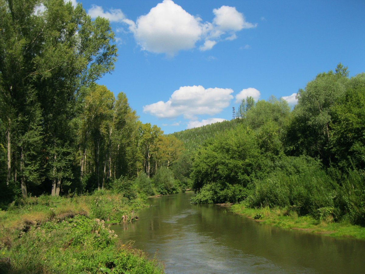 Река лесной тамбов фото