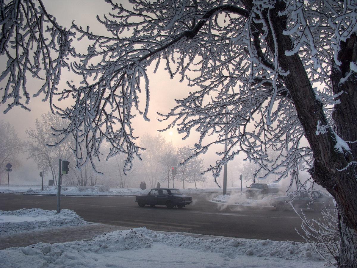 качестве летней фото зима деревья в городе себя своих