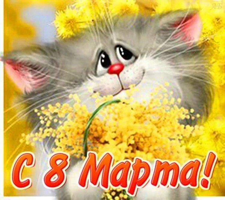 Юбилеем, 8 марта картинки котята