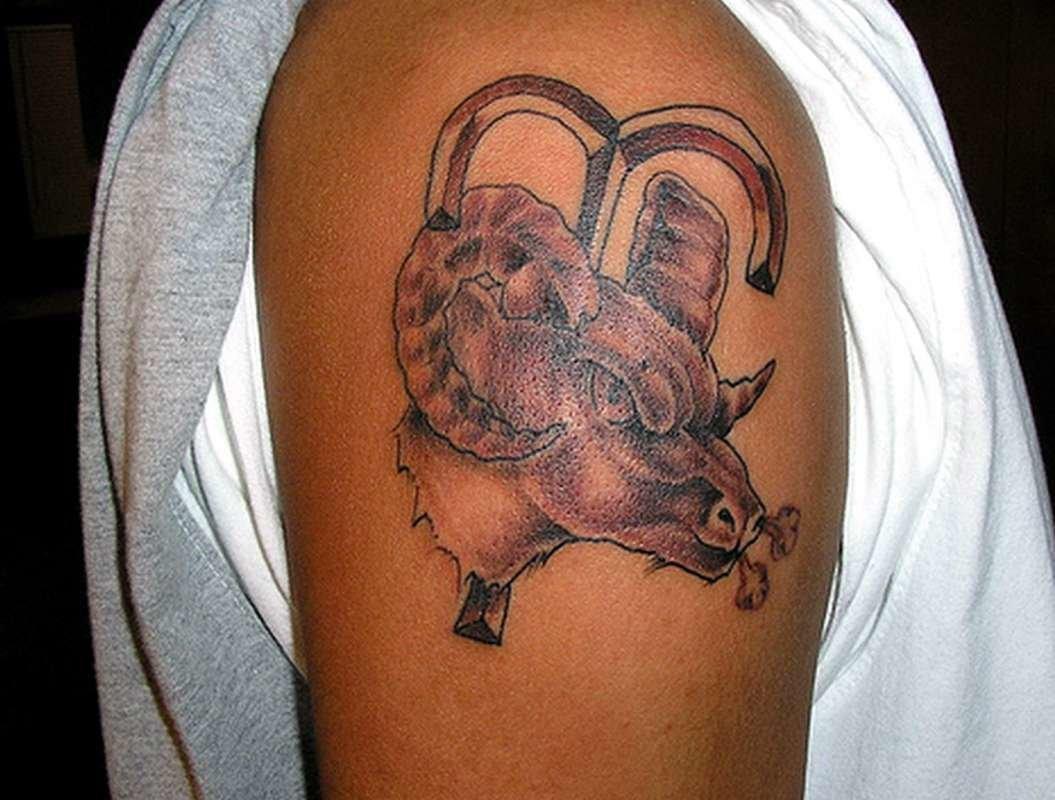 Фото татуировок знак зодиака овен
