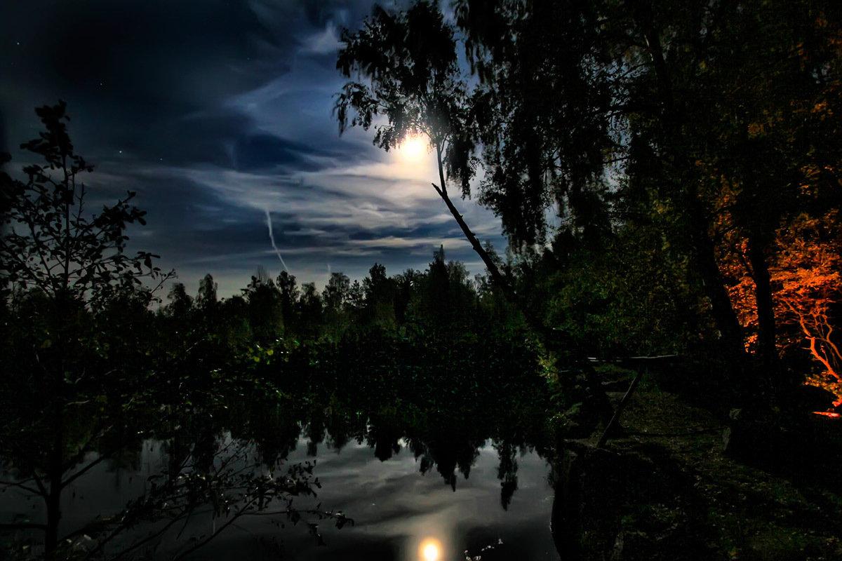 видно картинки лесное озеро ночью еще момента, когда
