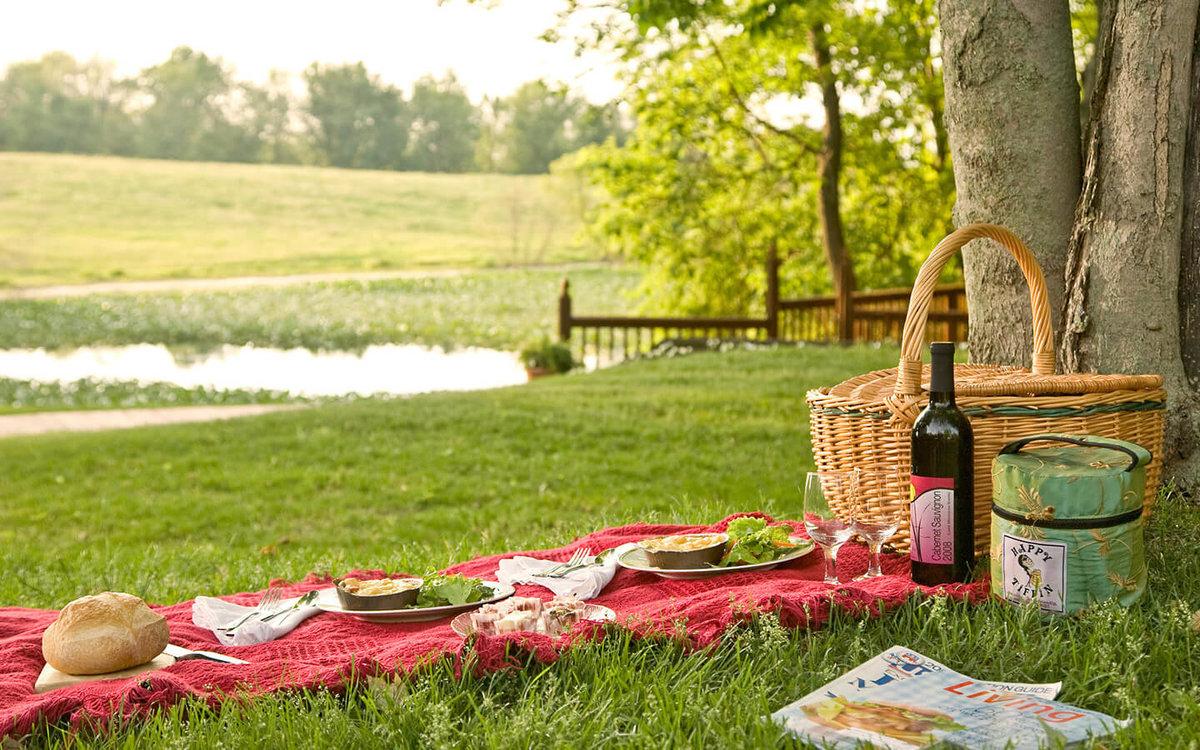 картинка пикник в парке важны исключительно
