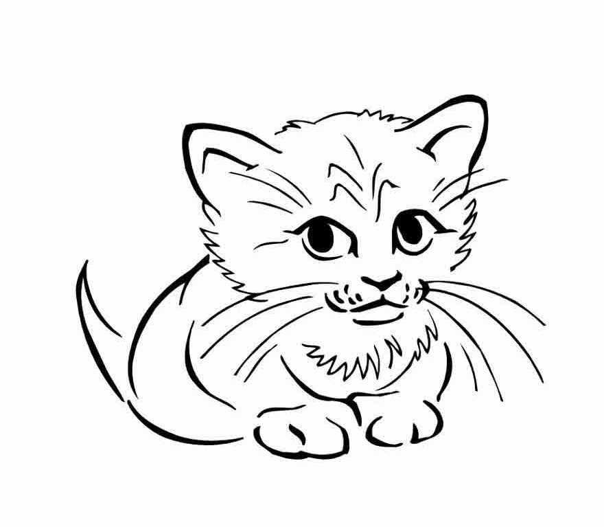 Картинки кошка и котенок для раскраски, открыток