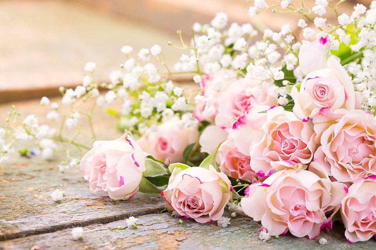 Открытки фото с цветами для блогов