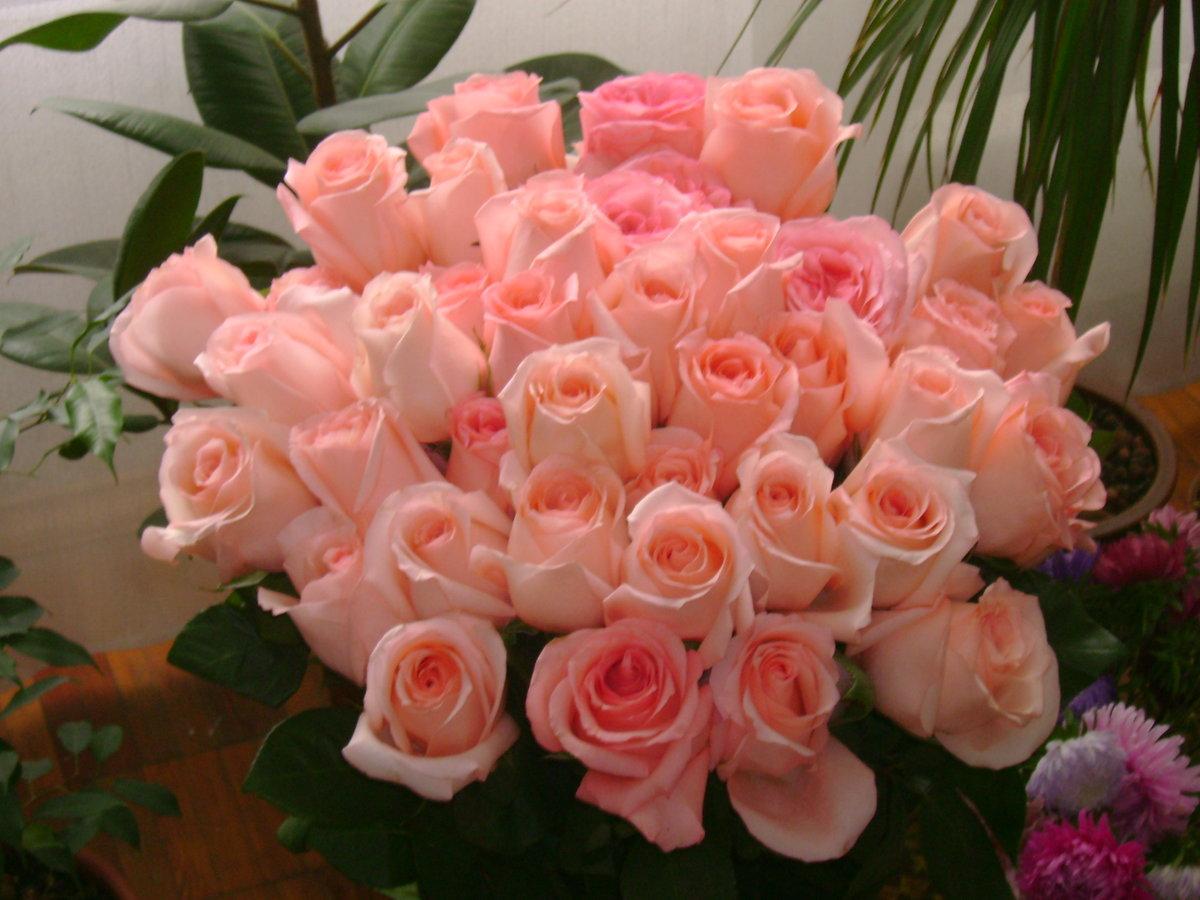 картинки розы букеты большие с надписью для вас пола керамзитом дает